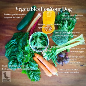 A small selection of vegetables to boost your dog's nutrition