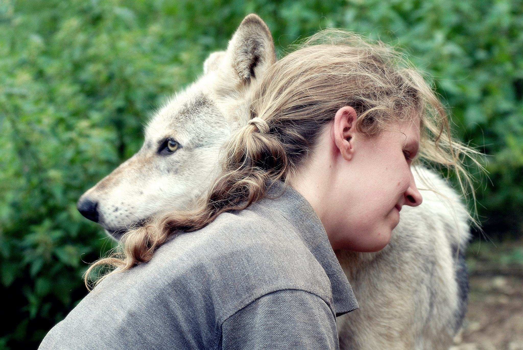 Part II – An interview with Dr Isla Fishburn, Canine Wellness Practitioner