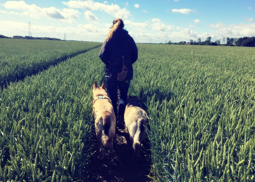 An Interview with Dr Isla Fishburn – Canine Wellness Practitioner (Part 1)